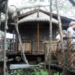 Magic Kingdom Attraction Guide – Swiss Family Treehouse