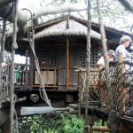 Swiss Family Treehouse over at Chip & Company