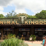 Disney's Animal Kingdom Memories