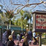 Walt Disney World: Help for Forgotten Details.
