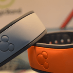 What is your Magic Band Report Card?