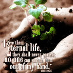 Prayers for the Week – Eternal Life