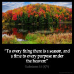 Prayers for the Week – A Season for everything